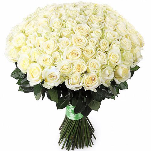 букет 101 белая роза картинка