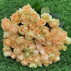 51 кремовая роза в Николаеве фото