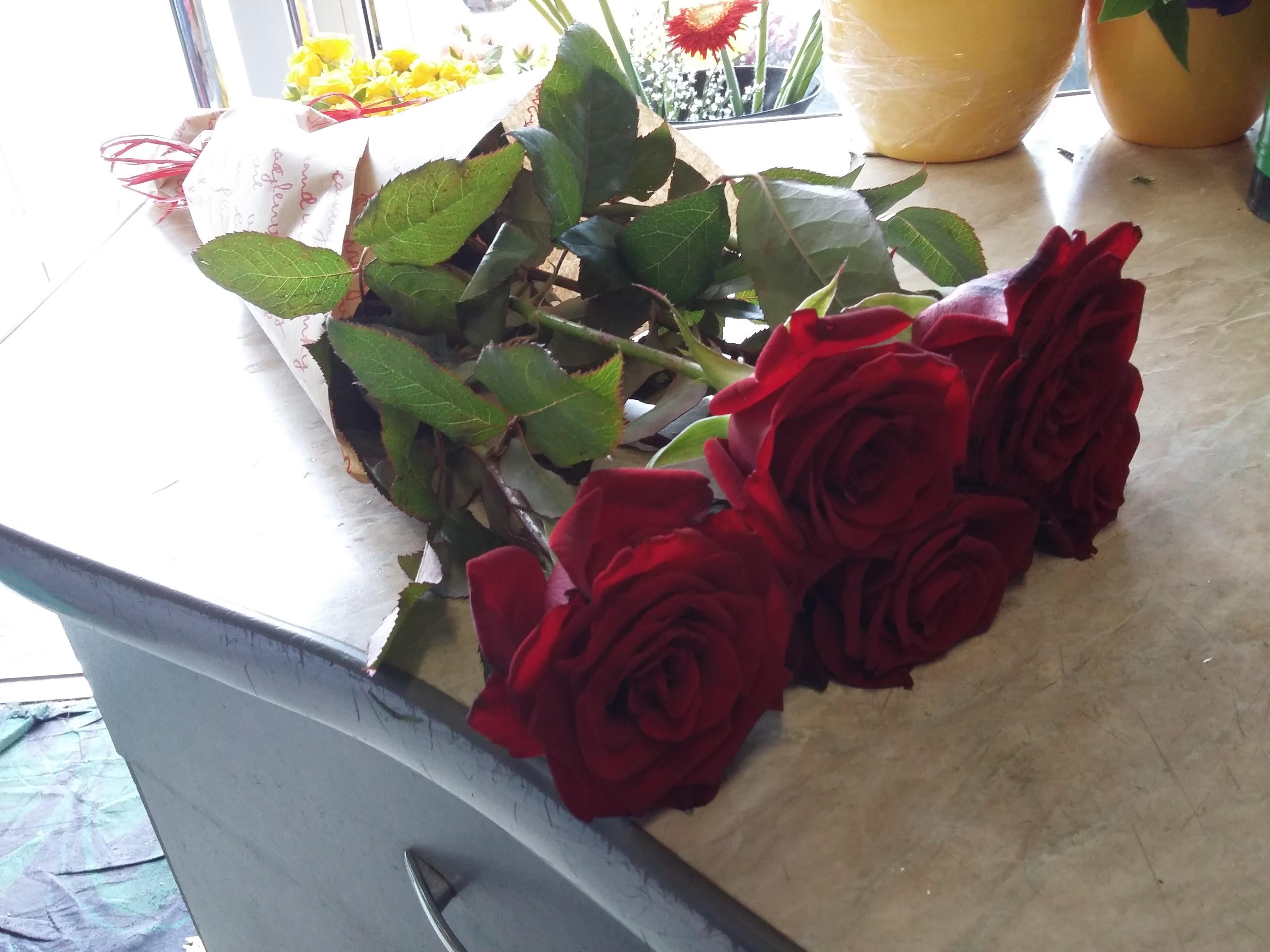 фото цветов на столе дома рады возможности высказать