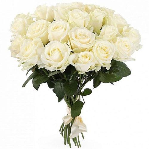 21 белая роза фото букета