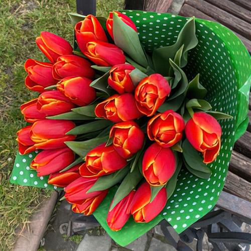 букет красных тюльпанов в Николаеве