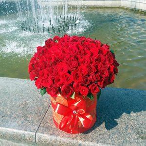 101 роза красная в шляпной коробке Николаев