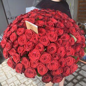 огромный букет красных роз