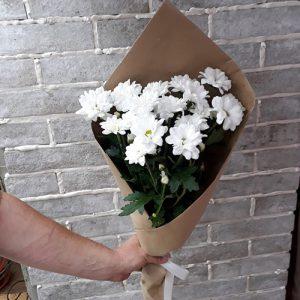 3 хризантемы - милый подарок дорогому человеку если вы далеко.