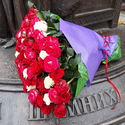 51 красно-белая роза в Одессе фото