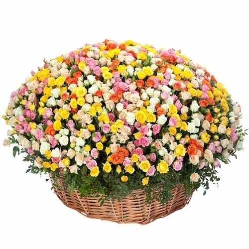 Фото букета 301 кустовая роза в корзине