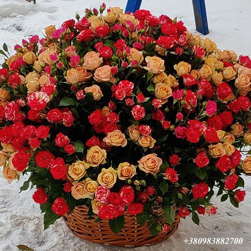 фото 101 кустовая роза в корзине